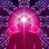 sogyal-rinpoche-awake