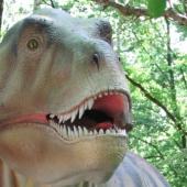 Dinopark-Amersfoort