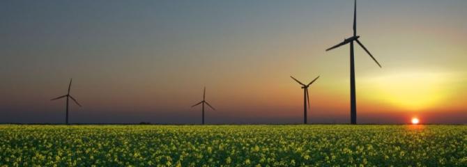 zonne-energie vs windenergie
