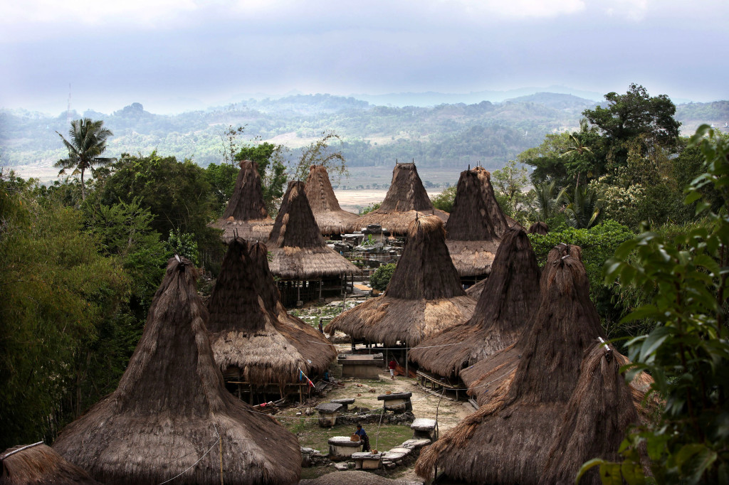 expeditie-sumba