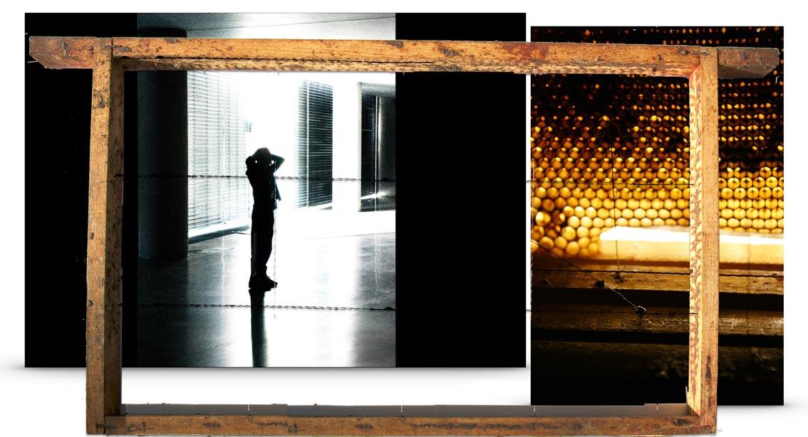 glow-patricia-smits-bijensterfte-kunst-GLOW-eindhoven-2014-licht-bijen-lichtkunst