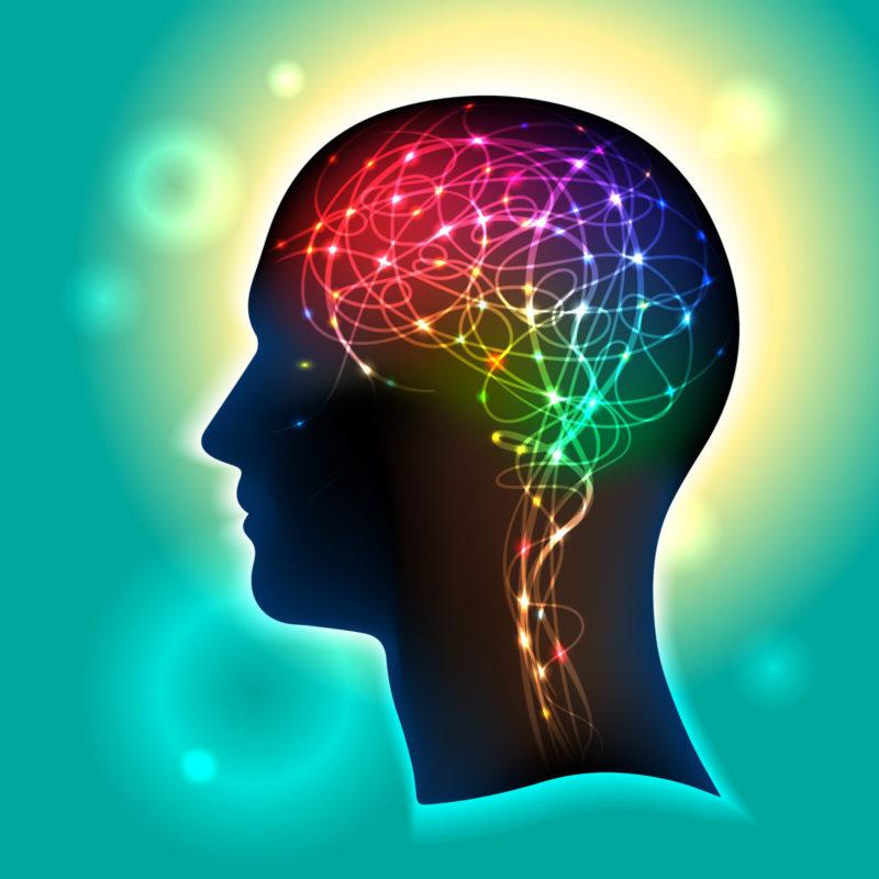 Geef Je Hersenen Een Oplapbeurt 7 Tips Om Ze Jong Te Houden