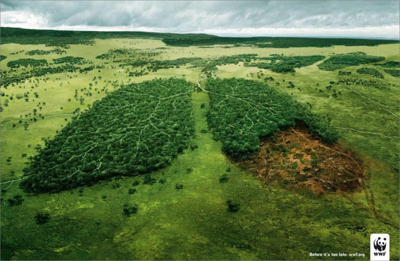 milieu verbeteren